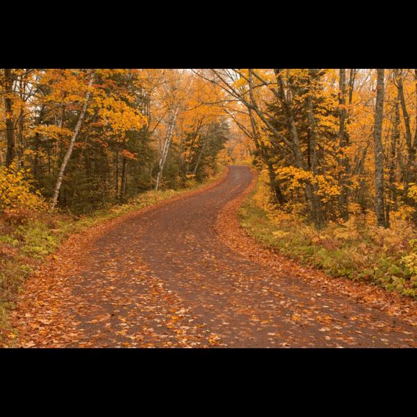 Honeymoon-Trail-sfw-min